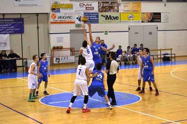 domo basket
