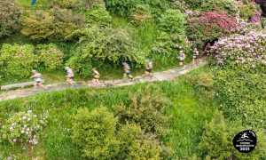 trail oasi zegna